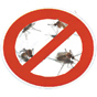 komarnici-001